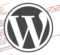 Categorias wordpress